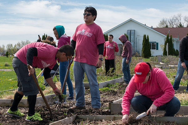 Students participate in NIU Cares Day